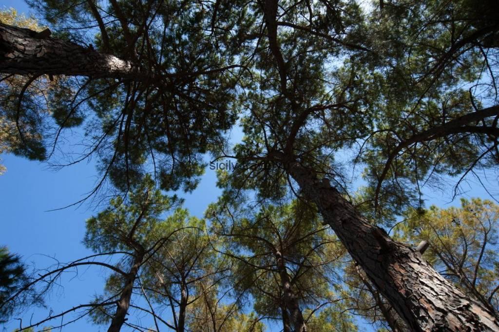 Парк Рагуза Ибла