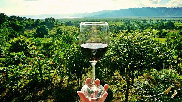 Экскурсионный тур на Сицилию. Винодельня